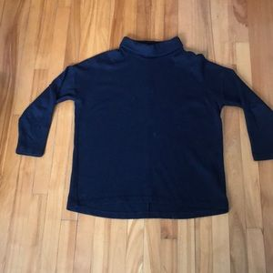 Wool Blend Turtle Neck Sweater